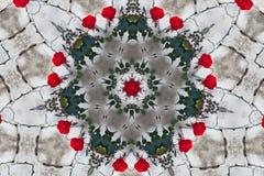 Modell av röda rosor kalejdoskop mandala Royaltyfria Foton