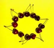 Modell av söta Cherry On Yellow Background Arkivbild