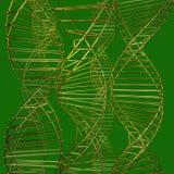 Modell av samlingsgalleratomen vektor illustrationer