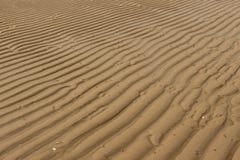 Modell av sand royaltyfria foton