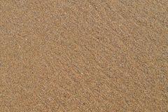 Modell av sandkorn, bruna färger, ok för bakgrund Royaltyfria Bilder