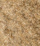 Modell av stenen Arkivfoton