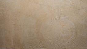 Modell av trä på yttersida Arkivfoton