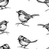 Modell av utdragna små fåglar vektor illustrationer
