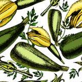 Modell av zucchinin och inflorescences Arkivfoton