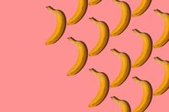 modell Bananbegrepp Grupp av bananer på rosa bakgrund C Royaltyfria Foton