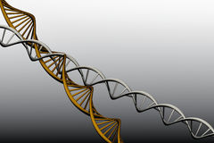 Modell 3 D av det vridna DNA:t. Arkivbilder