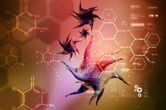 Modell 3d des Virus im Farbhintergrund Lizenzfreie Stockfotos