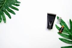 Modell der kosmetischen schwarzen Sahneflasche, leeres Aufkleberpaket auf einem Grün verlässt Hintergrund Stockfoto