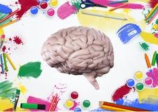 Modell des menschlichen Gehirns mit Farbbleistiften und -farben auf weißem Hintergrund Lizenzfreie Stockfotos