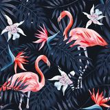 Modell för bakgrund för flamingostrelitziapalmblad mörk vektor illustrationer