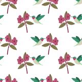 Modell för färgrika exotiska kolibrier för vektor sömlös på vit bakgrund med röda blommor stock illustrationer