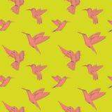 Modell för färgrika kolibrier för vektor sömlös på färgbakgrund vektor illustrationer