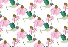 Modell för färgrika kolibrier för vektor sömlös på vit bakgrund med rosa blommor royaltyfri illustrationer