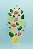 Modell för fruktlemonadingrediens arkivfoto