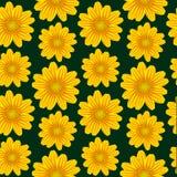 Modell för gul chamomile royaltyfri illustrationer