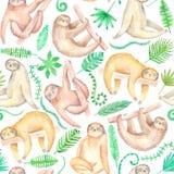 Modell för gullig sengångare för vattenfärg hand dragen sömlös royaltyfri illustrationer