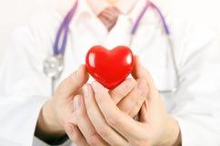Modell för hjärta 3D för kardiolog hållande Arkivbilder
