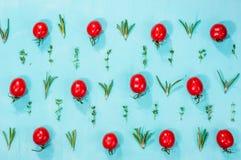 Modell för körsbärsröda tomater med rosmarin och timjan Royaltyfri Fotografi