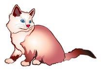 modell för katteps-mapp Royaltyfri Foto
