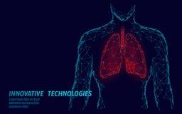 Modell för medicin för lungor 3d för mankontur poly sund lågt Triangel förbindelseprickglödpunkt Online-doktor World vektor illustrationer