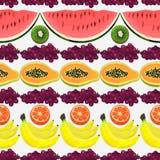 Modell för ny frukt Royaltyfri Bild