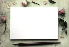 Modell för presentationer med torra rosor Royaltyfri Bild
