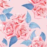 Modell för röda rosor för vattenfärg sömlös Royaltyfri Bild