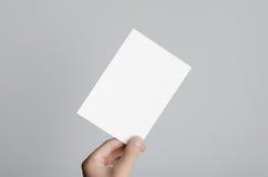 Modell för reklamblad A6/vykort-/inbjudan Fotografering för Bildbyråer