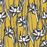 Modell för sömlös vår för pingstliljapåskliljor blom- Royaltyfri Fotografi