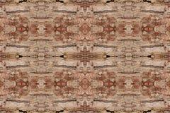 Modell för textur för trädskäll wood skal för bakgrund arkivfoto