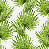 Modell för tropiska palmblad för vattenfärg sömlös royaltyfri illustrationer