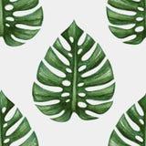 Modell för tropiska palmblad för vattenfärg sömlös stock illustrationer