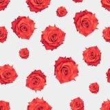 Modell f?r romantiskt tyg f?r r?da rosor s?ml?s r?d white f?r bakgrundsblomma F?r modetextur f?r tappning dekorativt tryck p? kl? royaltyfri fotografi