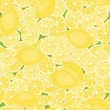 Modell från citroner Arkivfoto