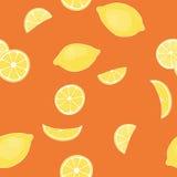 Modell från citroner Royaltyfri Foto