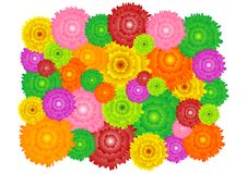 modell för 38 blomma Arkivbilder