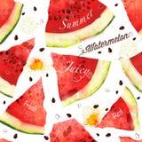 Modell för vattenfärg för vattenmelonvektorseamles Royaltyfria Bilder