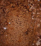 Modell från torr sprucken jord Arkivbild