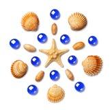 Modell i form av en cirkel som göras av den isolerade skal, sjöstjärnan och blåa glass pärlor på vit bakgrund Royaltyfria Foton