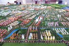 modell landskap av för det Lankao länet, Henan royaltyfri fotografi