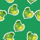 modell limefrukt och leavesand skivar samma format på grön bakgrund Fotografering för Bildbyråer