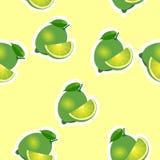 modell limefrukt och leavesand skivar samma format på gul bakgrund Arkivbilder