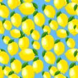 Modell med citronen och sidor Fotografering för Bildbyråer