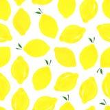 Modell med citroner Royaltyfria Foton