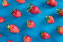 modell med jordgubben, blå bakgrund royaltyfri bild