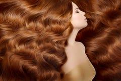 Modell med långt rött hår Vågkrullningsfrisyr Skönhetkvinna med långt sunt och skinande slätt svart hår Upd Royaltyfria Bilder