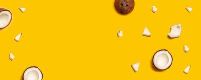 Modell med mogna kokosn?tter p? gul bakgrund royaltyfri fotografi