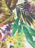 Modell med sidor och blommor av tropiska växter Arkivbild