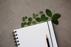 Modell mit sauberen Notizblock- und Kleeblättern, Draufsicht Flache gelegte Zusammensetzung des leeren Notizbuches und des Bleist stockfotografie